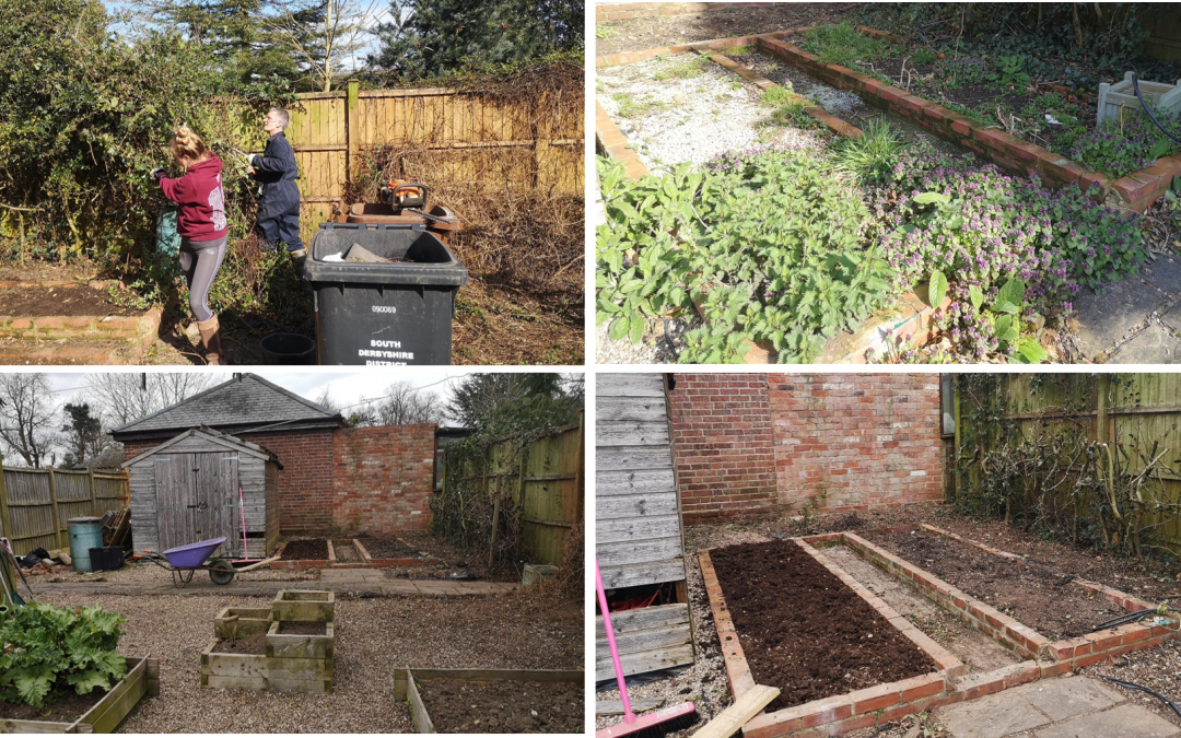 Making a vegetable patch
